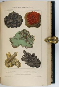 Simonin, Louis Laurent (1867) Biology Art, Mineralogy, Rocks And Minerals, Geology, Handwriting, Watercolour, Vintage World Maps, Science, Collections