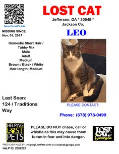 Lost Cat - Jefferson GA - Nov.01 2017 Closest Intersection: 124 / Traditions Way County: Jackson  #LOSTCAT #Leo #Jefferson (124 / Traditions Way)  #GA 30549 #Jackson Co.  #Cat 11-01-2017! Male #Domestic Short Hair / Tabby Mix Brown / Black / White/Leo is our sweet boy dearly missed! Please notify us if you have spotted him!! Thank you!!  CONTACT Phone: (678) 978-0499  More Info Photos and to Contact: http://ift.tt/2zmaro1  To see this pets location on the HelpingLostPets Map…