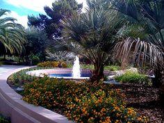 Las Vegas, Nevada LDS Temple - http://www.everythingmormon.com/las-vegas-nevada-lds-temple-2/  #mormonproducts #LDS #mormonlife