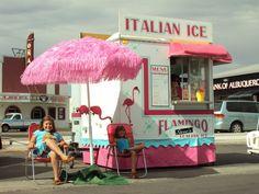Flamingo Steve's Italian Ice out of New Mexico...Deelicious!