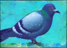 """""""Small Pidgeon"""" 5 by 7 inches acrylic on canvas Private collection"""