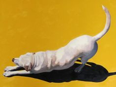 Down Dog by Cristall Harper