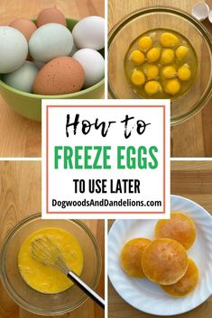 As a backyard chicken keeper I'm often asked Can you freeze eggs? However there are a few steps you need to take to be sure your eggs freeze and thaw properly. Recipes Using Egg, Egg Recipes, Cooking Recipes, Chicken Recipes, Can You Freeze Eggs, How To Cook Eggs, Homemade Baby Foods, Snacks Homemade, Finger Foods For Kids