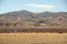 California's Drought Is 'The Greatest Water Loss Ever Seen,' And The Effects Will Be Severe