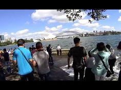 Virtual Treadmill Walk - Sydney Opera House to Mrs Macquarie's Point & B...
