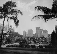 20 fotos lindas da cidade de São Paulo de 1924 a 1980  1955