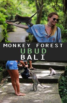 Ubud Monkey Forest is home to over 600 cheeky long-tailed macaque monkeys. How to get to Ubud Monkey Forest, Ubud Monkey Forest Price Monkey Forest, Ubud, Bali