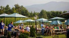 Blue Mountain Brewery, Afton  - Top 10 Craft Breweries in Virginia