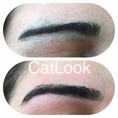 Recuperação de Sobrancelhas / Eyebrows Repair #designdesobrancelhas #eyebrowsdesign #repair