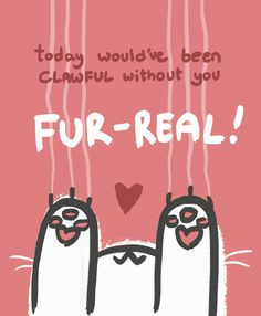 Today would have been clawful without you. Fur real!  | cat quotes