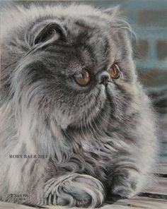 Pastel painting of a Persian cat 8x10 on Bristol Board
