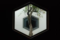 Suzhou Museum windows