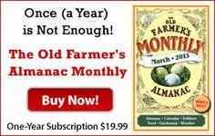 Companion list for 10 common veggies - from the Farmer's Almanac