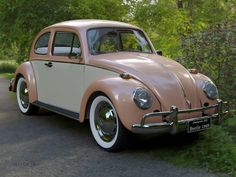 Wolkswagen Van, Vintage Cars, Antique Cars, Volkswagen Transporter, Volkswagen Vehicles, Car Volkswagen, Classy Cars, Vw Cars, Cute Cars