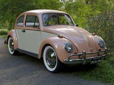 My Dream Car, Dream Cars, Volkswagen Transporter, Volkswagen Vehicles, Car Volkswagen, Vw Cars, Cute Cars, Vw Beetles, Classic Cars