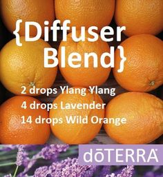 Oranges, a true zesty experience! Try this diffuser blend for a fruity, tangy, sweet aroma. Essential Oil Ylang Ylang, Lavender and Wild Orange. www.hayleyhobson.com