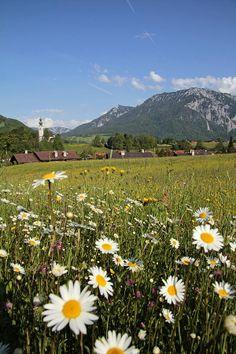 Ruhpolding, Chiemgau, Germany