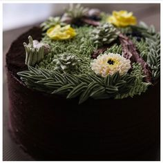 Succulent, now on a cake - ivenoven