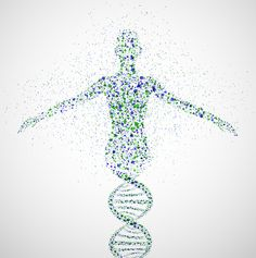 dna strand shaped spine - Google Search