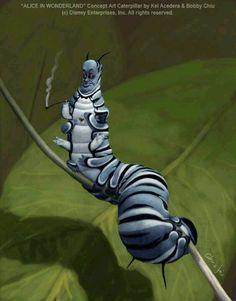 A Cool Cat'ipillar