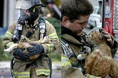 You can see the gratitude in this poor cat's eyes. The fact that a firefighter would go to the trouble of rescuing a cat makes my day. God, I love these pictures.