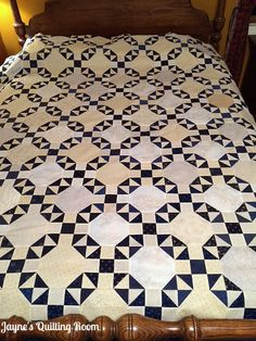 Snow Shoo; quilt top; made January/February 2018. Blog: Jayne's Quilting Room