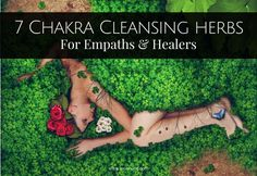 This simple free guide will help you discover the best seven chakra cleansing herbs out there. Every empath and healer needs to read this!