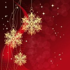 GladsBuy Lovely Presents 5 x 7 Computer Printed Photography Backdrop Christmas Theme Background ST-027