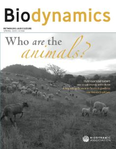 Biodynamic Association: A website dedicated to educating the world about sustainable, beneficial, beyond organic agriculture.