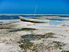 L'effet des marées à Zanzibar, Tanzanie