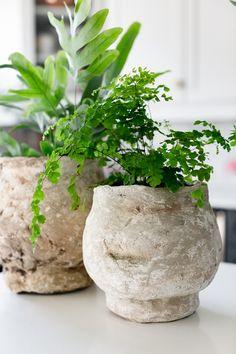 Faux Antique Concrete Planters by Craftberry Bush Concrete Crafts, Concrete Projects, Concrete Planters, Diy Planters, Terracotta Pots, Flower Pots, Antiques, Modern, Plants