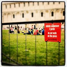 Do not walk on the grass ..just sit! ;) @ #Pisa Photo by @marialuengo12