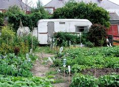 caravan renovation ideas 607634174711755658 - wow love the caravan idea for an allotment and might work out cheaper than a new shed Source by carruthersvicky Source by Allotment Plan, Allotment Gardening, Caravan Renovation, Grow Your Own Food, Garden Projects, Beautiful Gardens, Garden Plants, Restoration, Shed