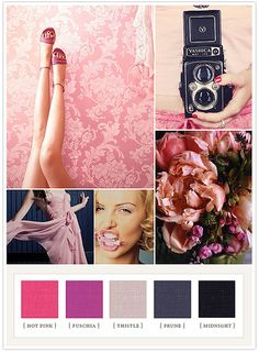color / mood boards / 100 layercake | Flickr - Photo Sharing!