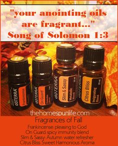 Fragrances of Fall please visit thehomespunlife.com