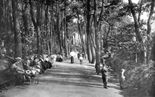 Photo of Invalids Walk 1900, Bournemouth