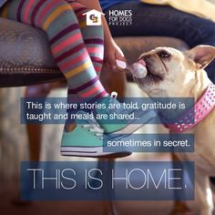Homes For Dogs Project: For over 100 years, Coldwell Banker has helped people find home, and now our mission extends to man's best friend. We've teamed up with Adopt-a-Pet.com, North America's largest non-profit pet adoption website, to help adoptable dogs find a loving home.  Visit www.ColdwellBanker.com/dogs to find out how you can get involved!