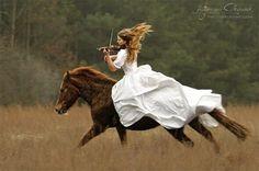 Pferd Geige