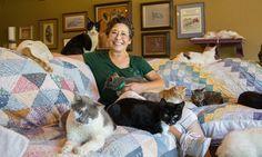 """1100 kediye ev yapınca, konteyner seyran olur 67 yaşındaki Lynea Lattanzio, Kaliforniya'da yaşadığı evi 1100 kediye verip bahçesindeki konteyner eve yerleşen güzel yürekli kadınlardan birisi. Kedili teyze gerçek sevginin vücut bulmuş hali olarak çok sevdiği """"dostları"""" için bunu yaptığını ve mutlu bir hayatları olduğunu dile getirerek, başlıyor hikayesini anlatmaya… Detaylar ajanimo.com'dan.. #ajanbrian #ajanimo #cat #kedi #köpek #cat #dog #love #hayvansevgisi #animal #animals #hayvanhakları"""