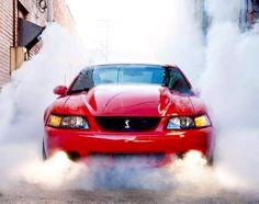 SVT Cobra 2001 Mustang Cobra, 2004 Ford Mustang, Ford Mustang Fastback, Mustang Cars, Car Ford, Ford Trucks, 4x4 Trucks, Chevrolet Trucks, Diesel Trucks