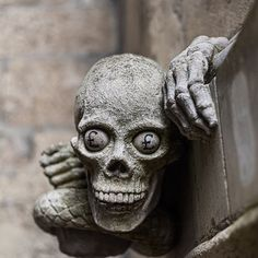 Interesting GargoyleLincoln Cathedral Lincoln  #lincoln #lincolncathedral #cathedral #gargoyles #skull #death #pound Lincoln Cathedral, Buddha, Death, Skull, Statue, Photos, Instagram, Pictures, Sculptures