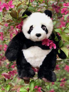 Find Xian Xian and many more custom plushies at www.AuswellaPlush.com #plushies #plush #stuffed #stuffedanimal #stuffedtoys #auswella #auswellaplush Doll Toys, Pet Toys, Dolls, Cool Pixel Art, Panda Bear, Plushies, Cute Animals, Pets, Baby Dolls