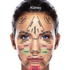 Reflexology chart of the face (for acupressure & acupuncture) Wykres refleksologii twarzy (do akupresura i akupunktura) Ayurveda, Alternative Health, Alternative Medicine, Diy Beauty Tutorials, Face Mapping, Massage Therapy, Massage Tips, Natural Medicine, Natural Healing
