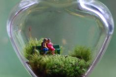 terrarium let's grow old together.......lots of other tiny and cute ideas.      Pc