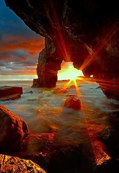 """""""Just like a sunbeam can't separate itself from the sun, and a wave can't separate itself from the ocean, we can't separate ourselves from one another...""""  ~ Marianne Williamson"""