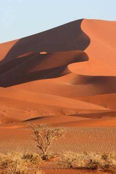 namibie #travel #africa #desert