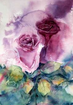 Die 356 Besten Bilder Von Rosen Floral Watercolor Watercolor