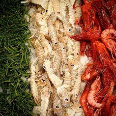 @eatalygram Repost_______ @sandraciciriello #colors #gambero_rosso #cicale #asparago_di_mare #fish_market #tumblr #instagram #foursquare #pinterest #twitter #like #day #it #italy #i_love_photo #iphone5 (presso Eataly Milano Smeraldo)