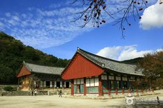 Seonunsa Temple, Jeollabuk-Do, South Korea | Jeollabuk-do » Gochang-gun » Seonunsa Temple (선운사)