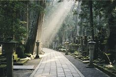 Koyasan, via Flickr. Mount Koya is the center of Shingon Buddhism.